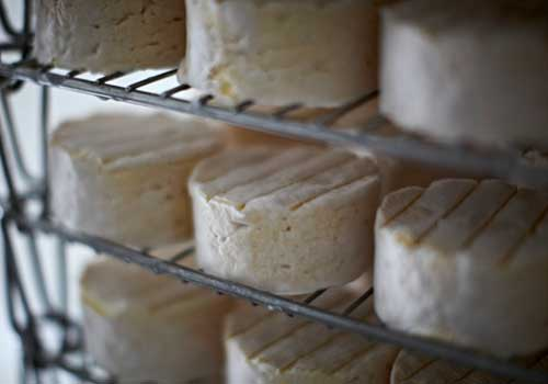 carrigbryne cheese